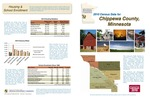 2010 Census Community Data Brochure- Chippewa County