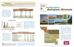 2010 Census Community Data Brochure- City of Bellingham by Center for Small Towns (University of Minnesota, Morris) and Upper Minnesota Valley Regional Development Commission