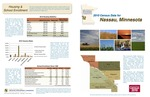 2010 Census Community Data Brochure- City of Nassau