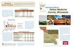 2010 Census Community Data Brochure- Yellow Medicine County