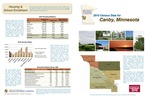 2010 Census Community Data Brochure- City of Canby