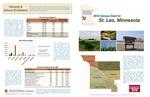 2010 Census Community Data Brochure- City of St. Leo