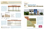 2010 Census Community Data Brochure- City of Wood Lake