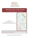 Red Rock Lake: A Path Forward by Colette Millard and Edwin Brands