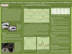 The Effects of Water Quality on the Habitat Use of Tiger Salamanders in Prairie Wetlands by Broc S. Kokesh