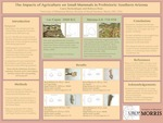 The Impacts of Agriculture on Small Mammals in Prehistoric Southern Arizona by Laura Borkenhagen