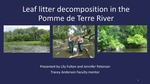 Leaf Litter Decomposition in the Pomme de Terre River by Lily Fulton
